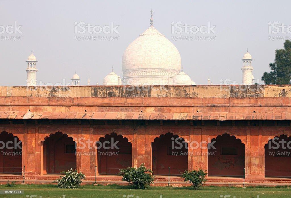 Taj Garden in the morning royalty-free stock photo