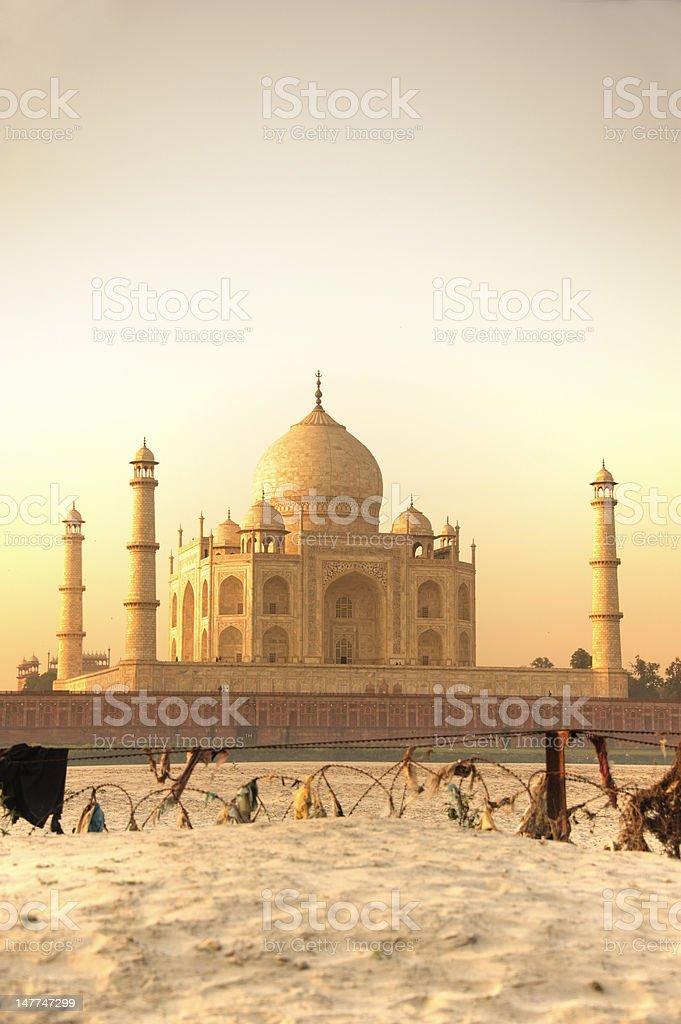 Taj Mahal behind barb stock photo