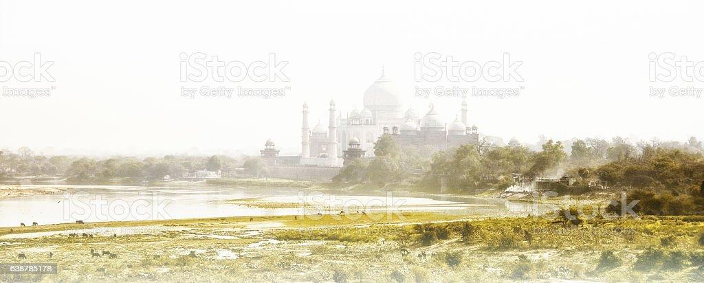 Taj Mahal from Agra Fort stock photo