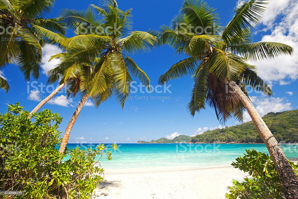 Anse Takamaka stock photo