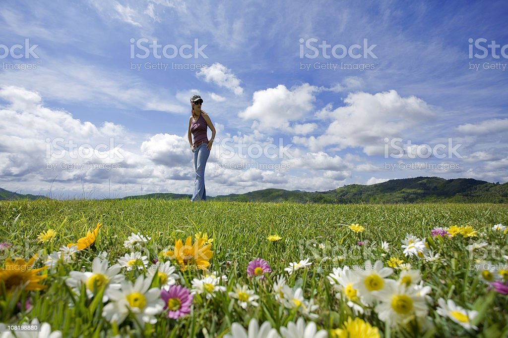 Take a walking in meadow royalty-free stock photo