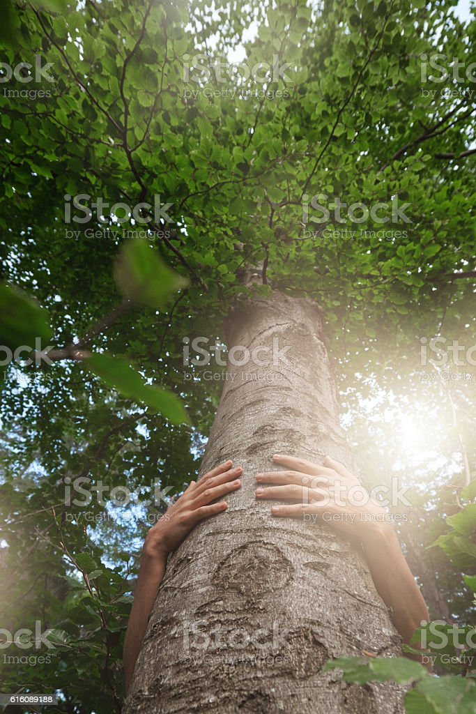 take care of the environment stock photo