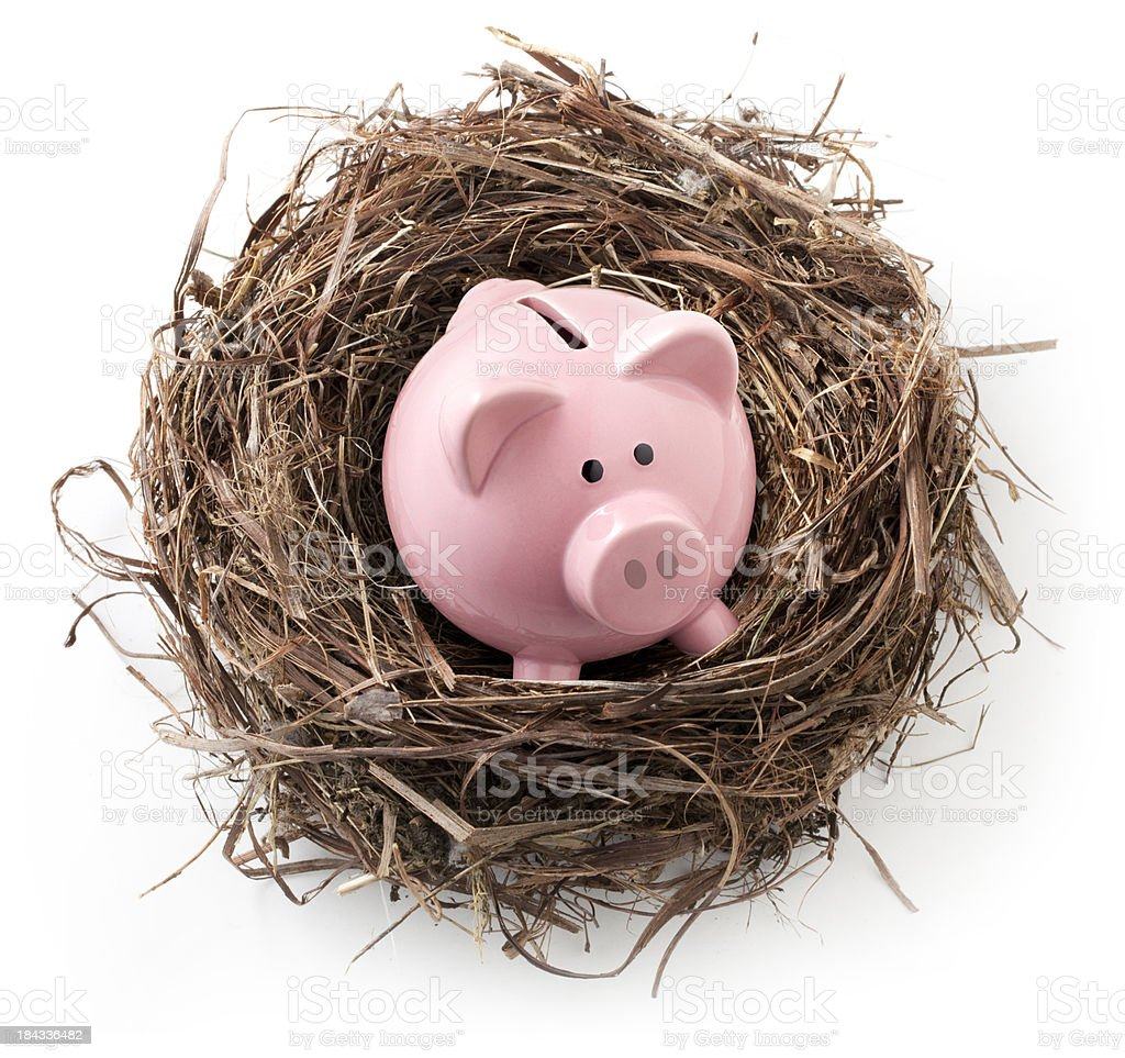 Take care of their own savings. Nest with piggy bank. royalty-free stock photo
