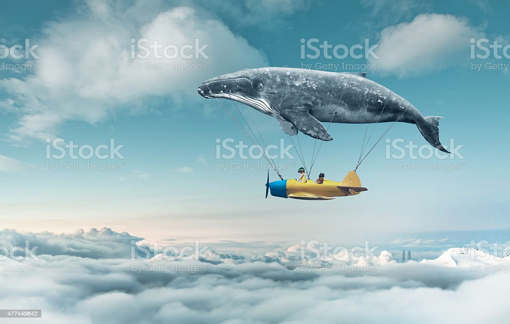 Take me to the dream stock photo