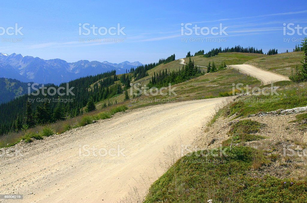 Take the High Road in Olympics royalty-free stock photo