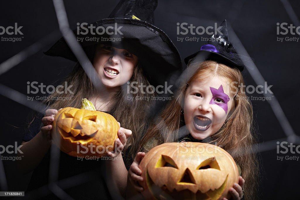 Take this pumpkin! royalty-free stock photo