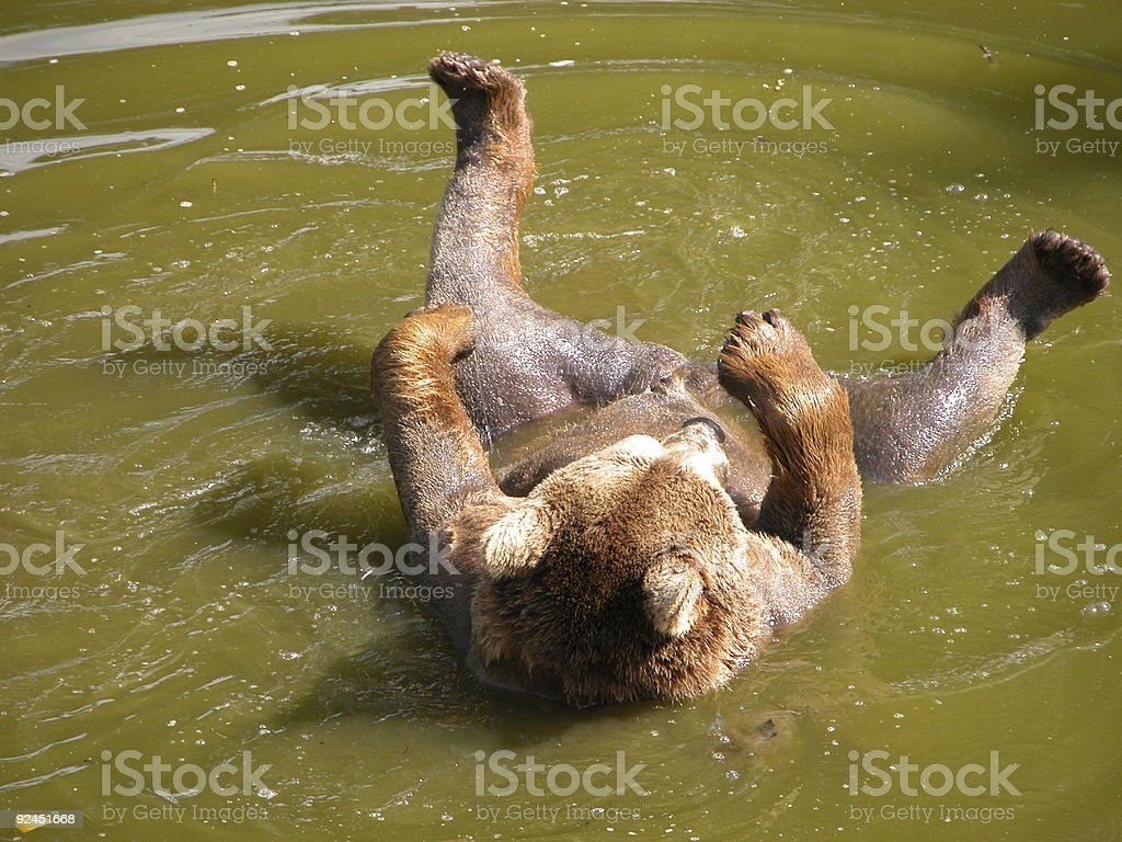Taking a bath stock photo