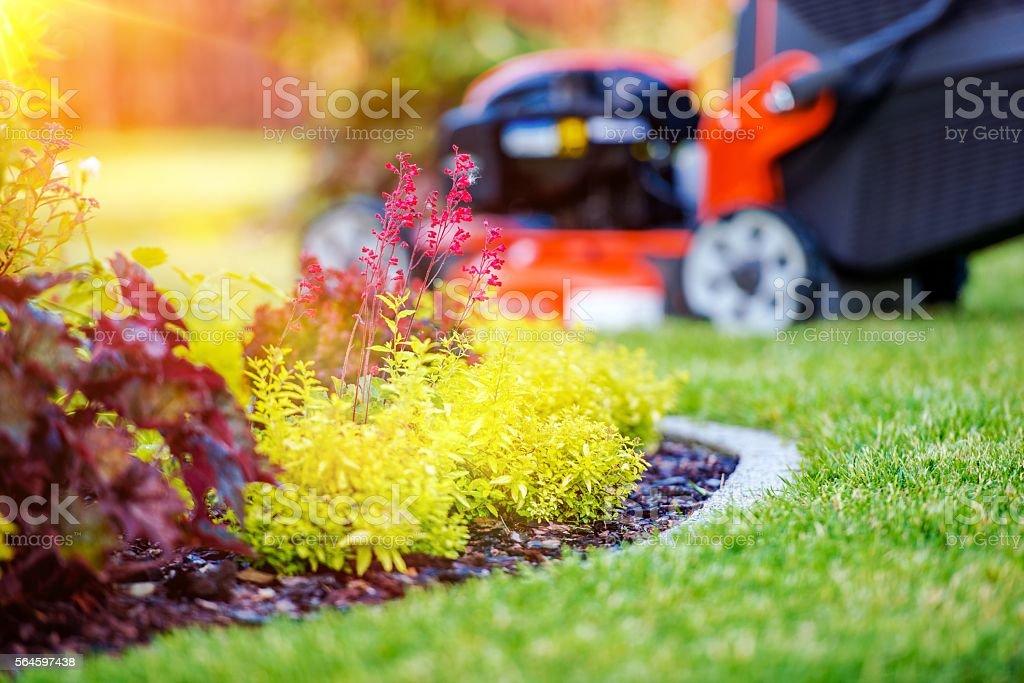 Taking Care of Garden Concept stock photo