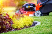 Landscaping – My Most Valuable Tips