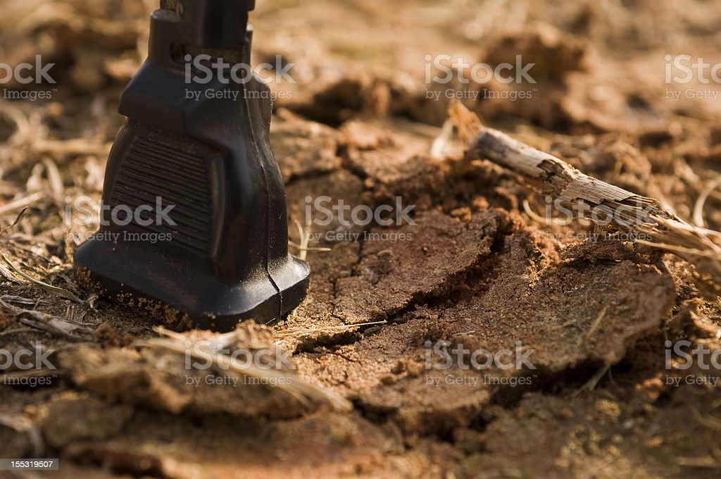 Taking electricity from nature royalty-free stock photo