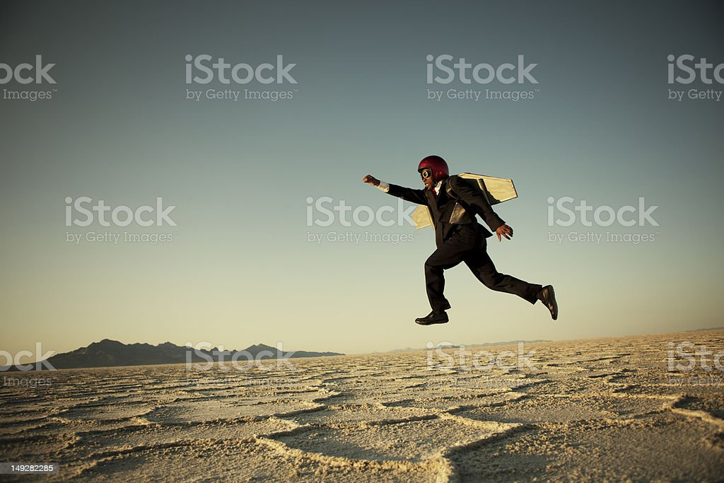 Taking Flight royalty-free stock photo