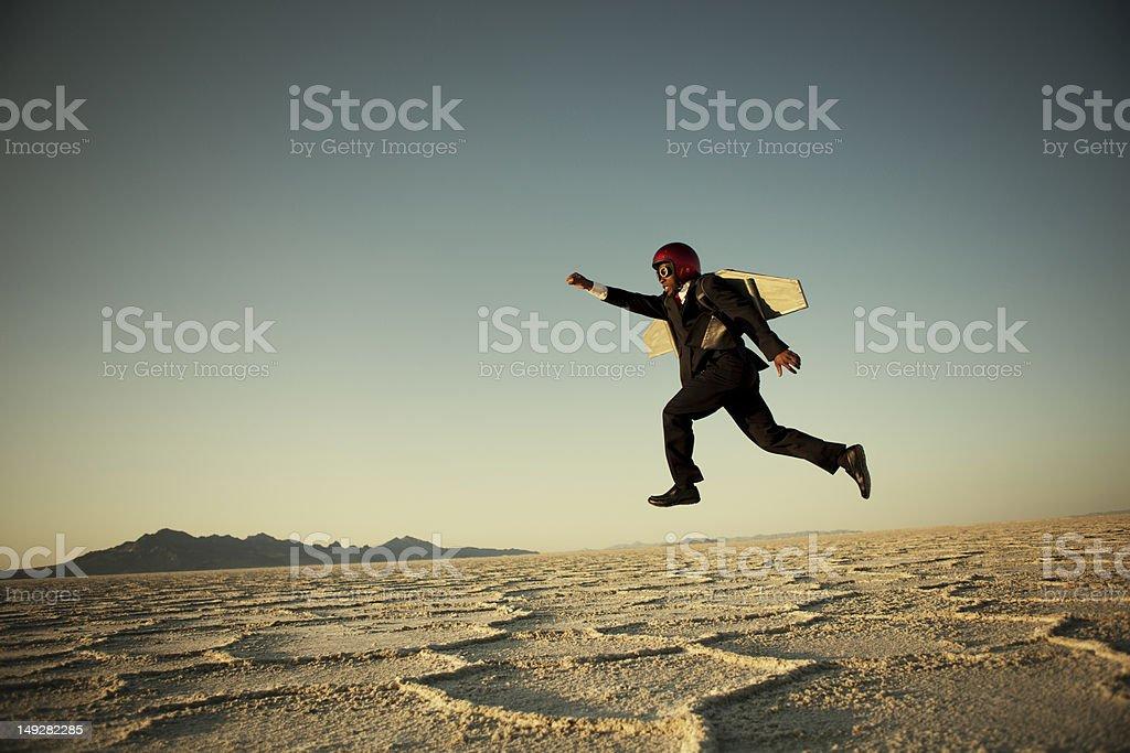 Taking Flight stock photo