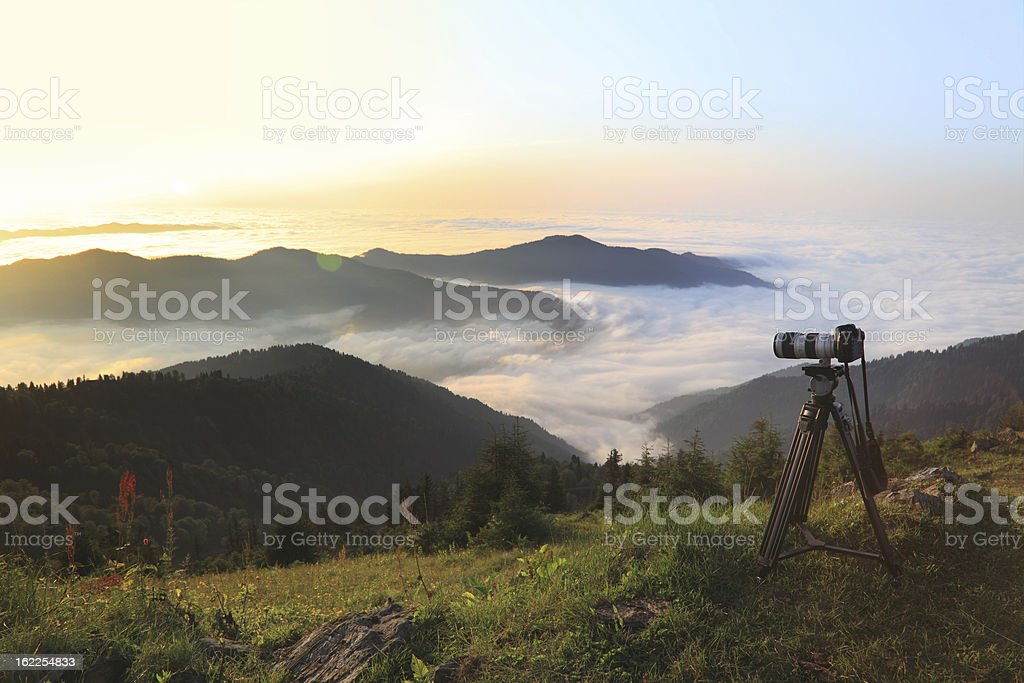 Taking Nature Photos stock photo