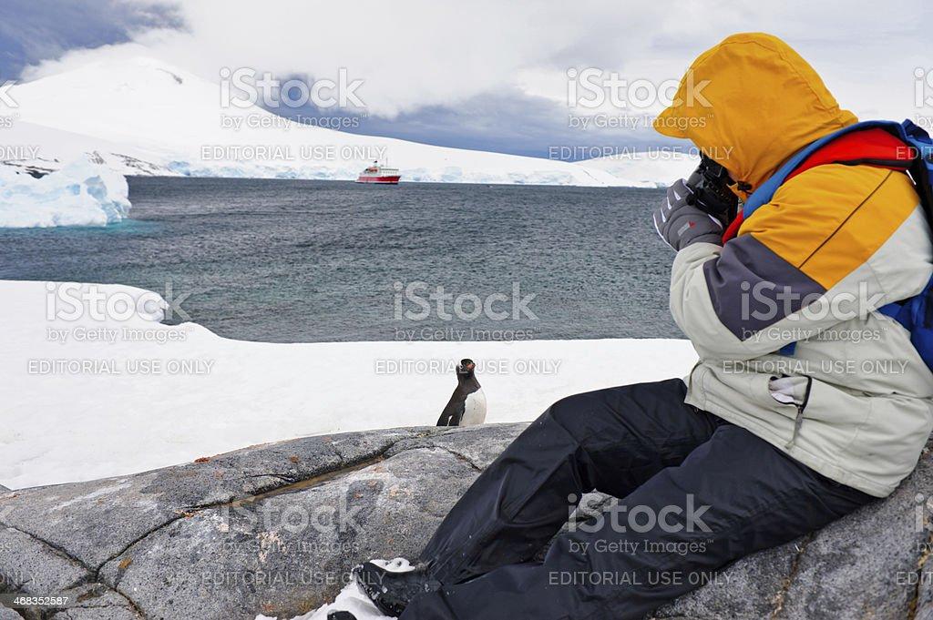 Taking photo stock photo