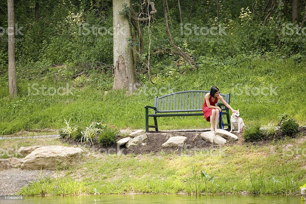 Taking Puppy To The Park stock photo
