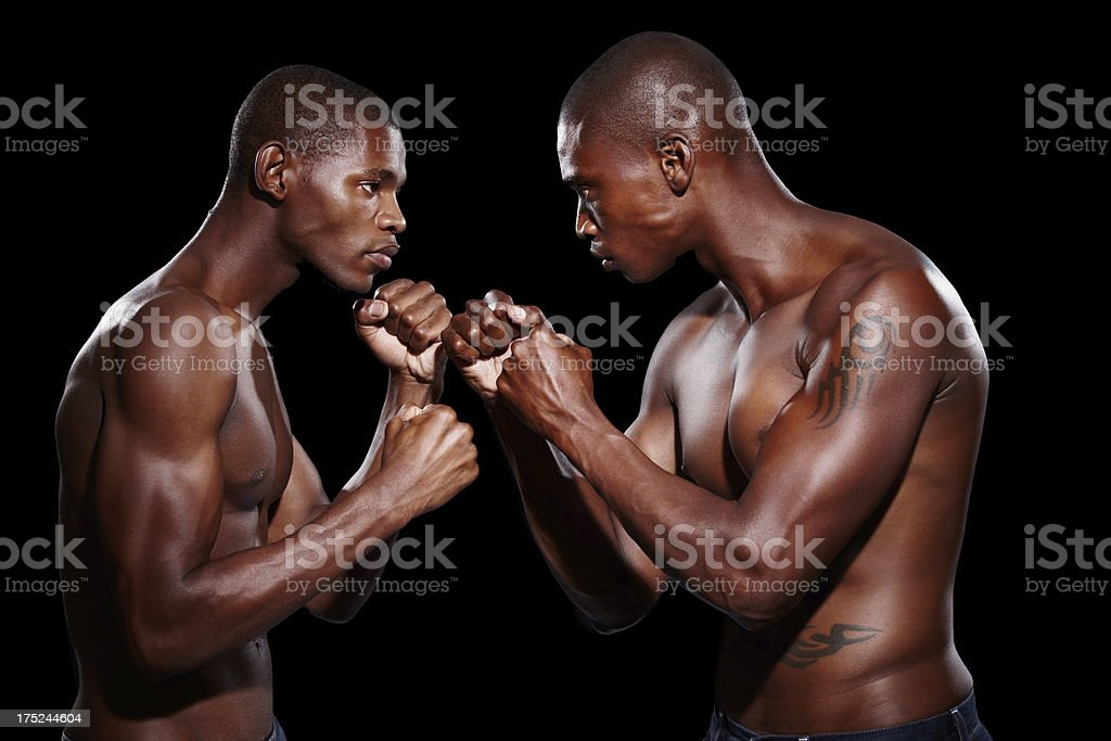 Taking their rivalry to a new level royalty-free stock photo