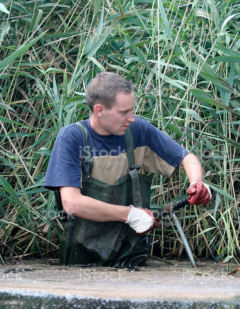 Taking water and mud samples. royalty-free stock photo