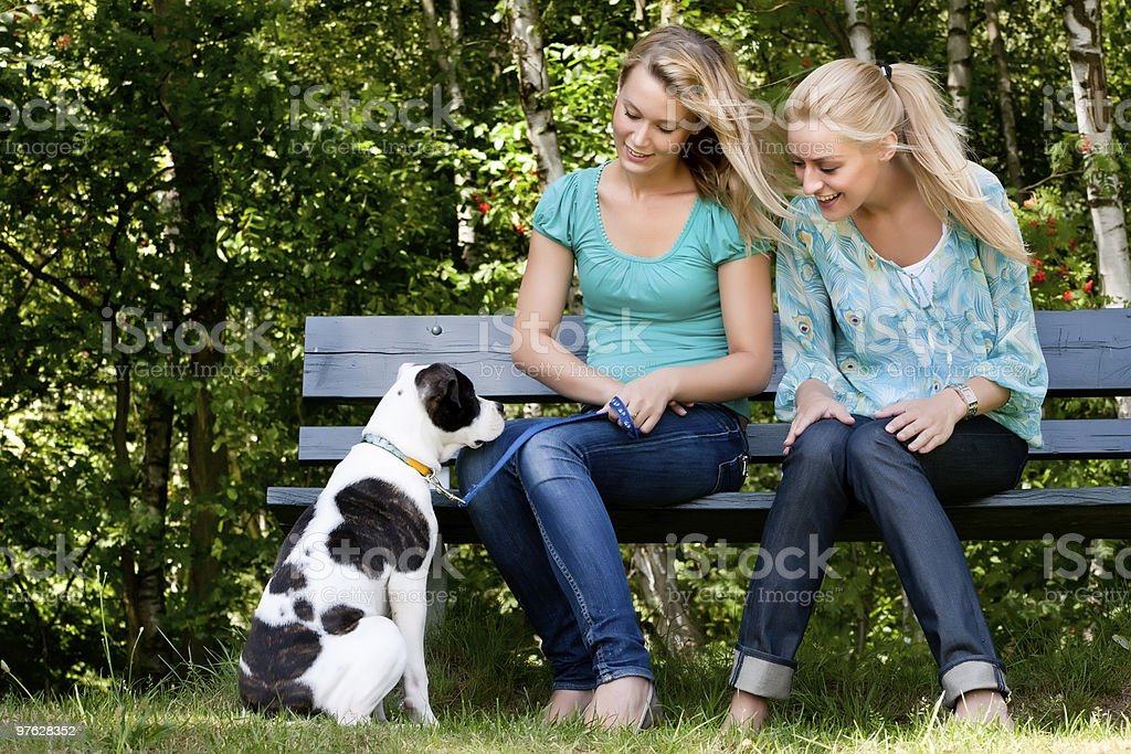 Talking to the dog royalty-free stock photo