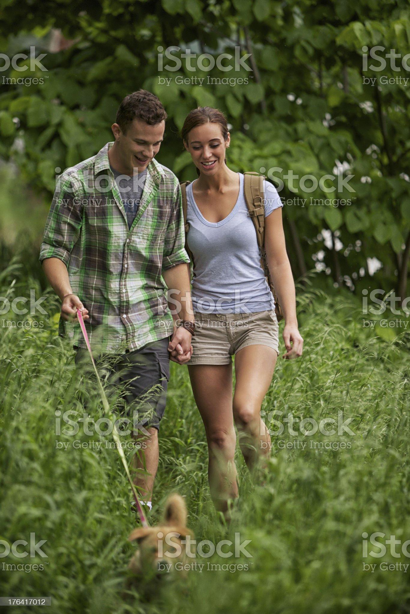 Tall Grass royalty-free stock photo
