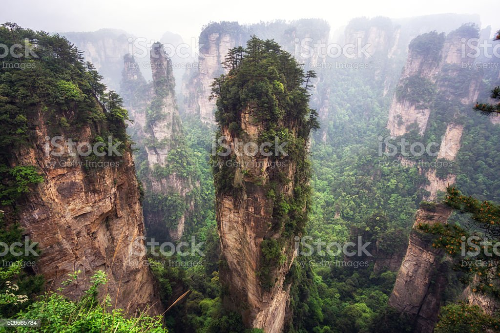 tall mountain peaks of yuanjiajie stock photo