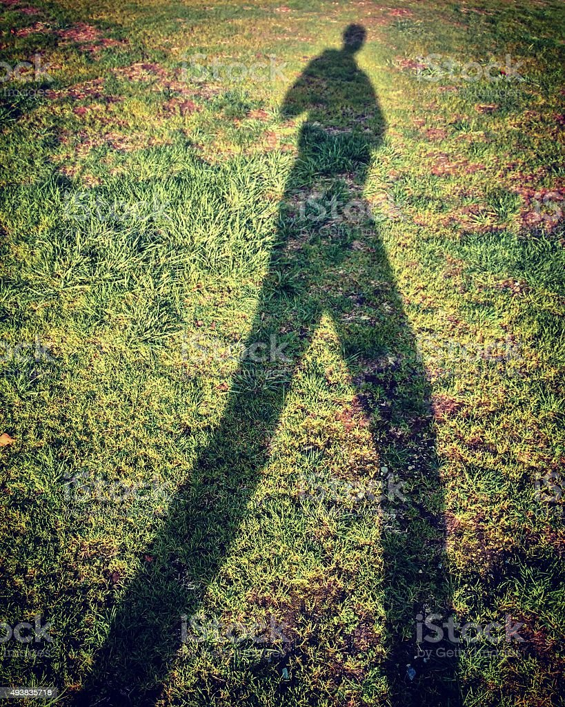 Tall shadow on grass lawn stock photo