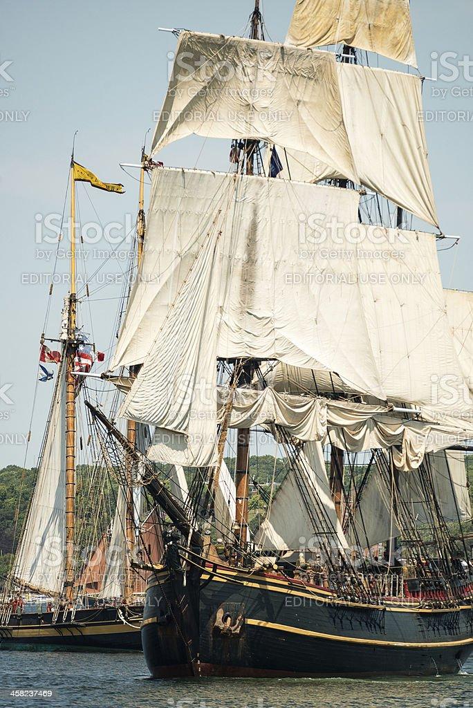 Tall Ship HMS Bounty royalty-free stock photo