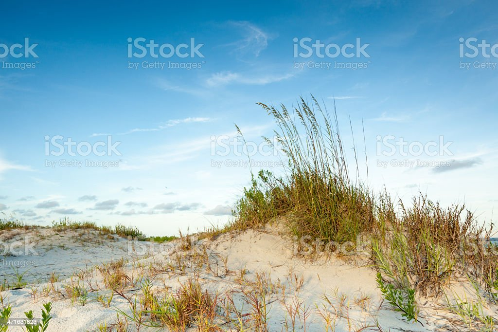Tall Twilight Dune royalty-free stock photo