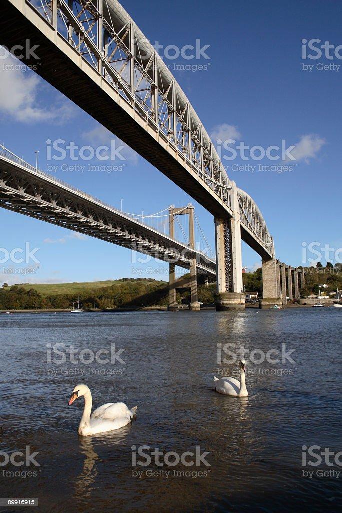 Tamar and Brunnel Bridges stock photo
