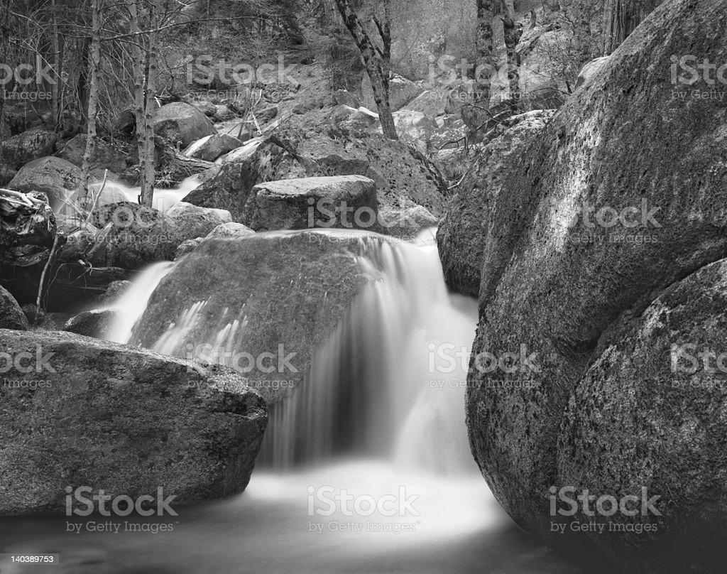 Tamarack Creek royalty-free stock photo