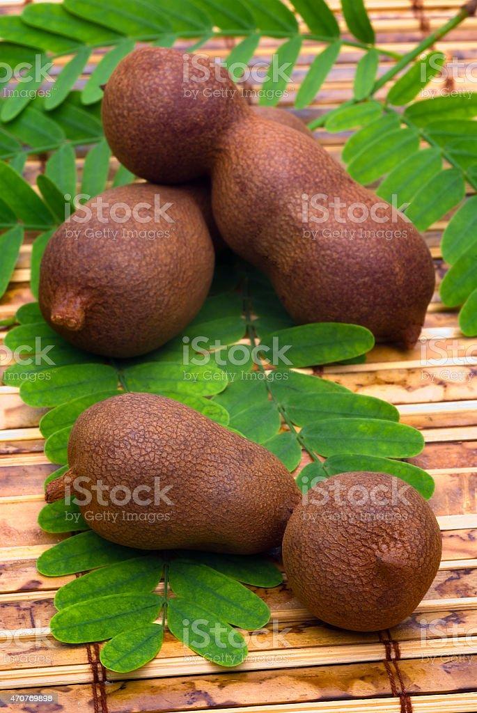 Tamarind (Tamarindus indica) pods and leaves stock photo