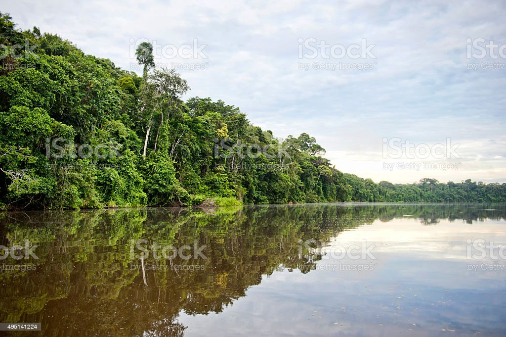 Tambopata Province stock photo