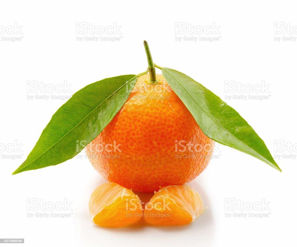 Com folhas de tangerina e fatias isolado no fundo branco foto royalty-free