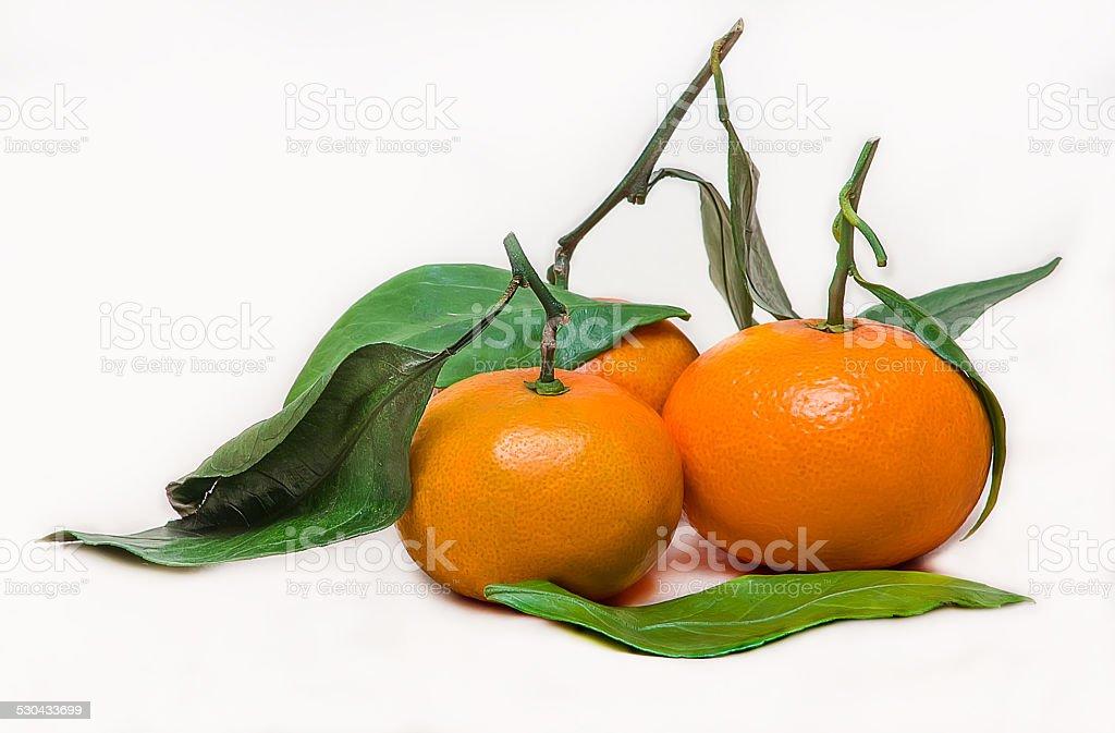 tangerines sobre blanco foto de stock libre de derechos