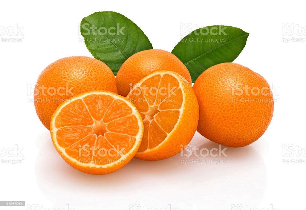 Tangerines. stock photo