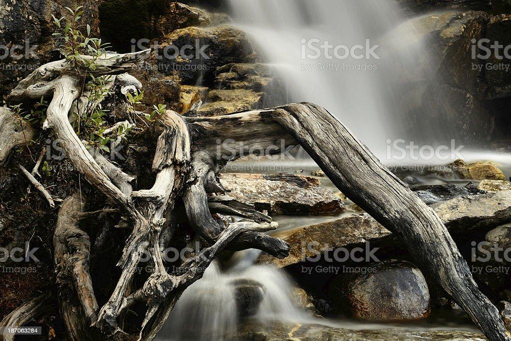 Tangle Creek Falls royalty-free stock photo