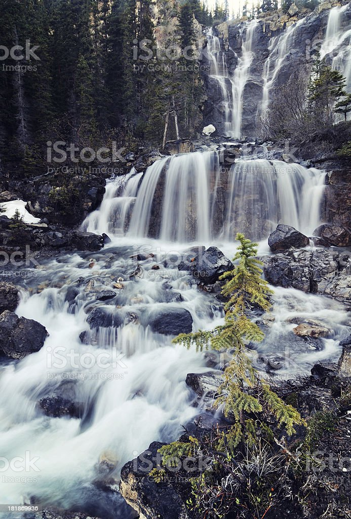 Tangle Falls Waterfall in forest royalty-free stock photo