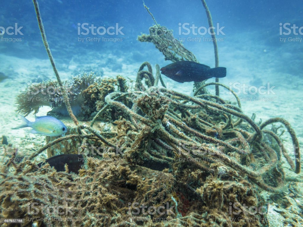 Tangled Fishing Ghost Nets in Ocean Environmental Damage stock photo