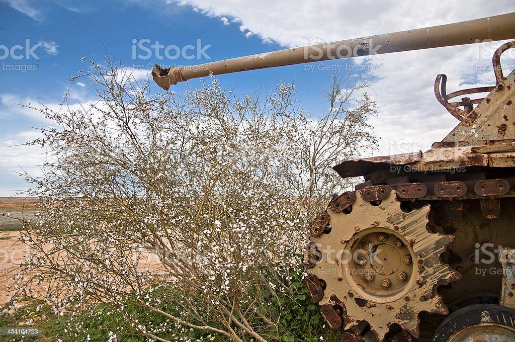 Tank - Gaza Strip stock photo