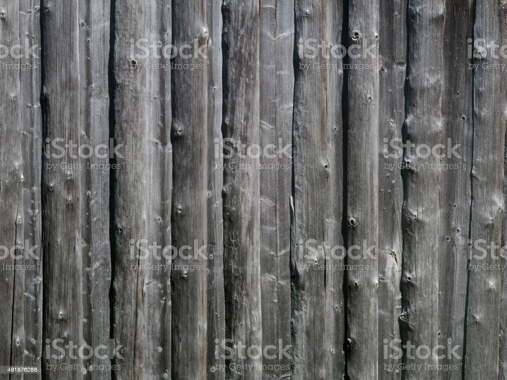 Tannenholz stock photo