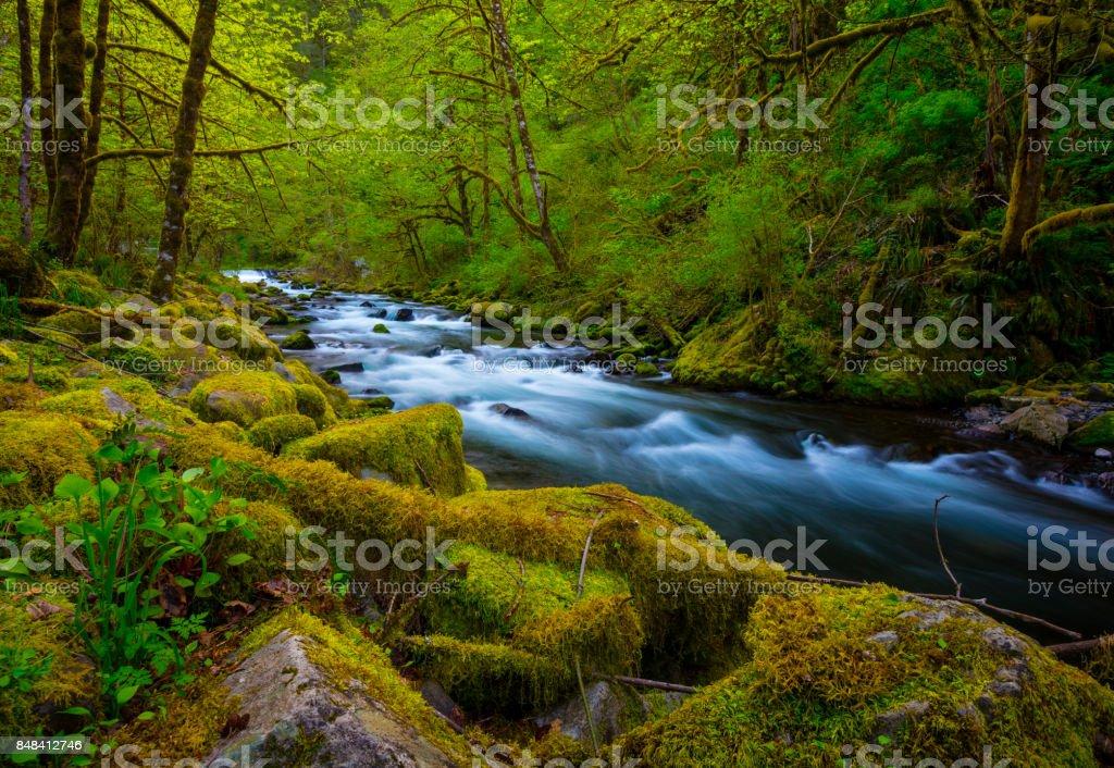Tanner Creek Oregon stock photo