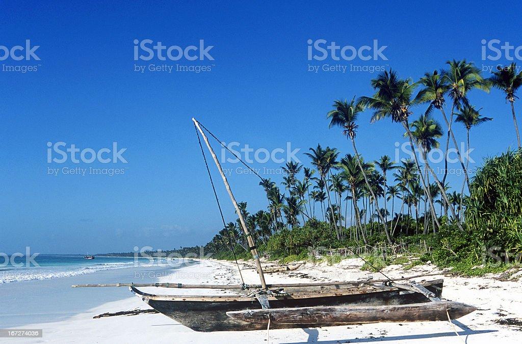 Tanzania, Zanzibar, east coast, beach. stock photo