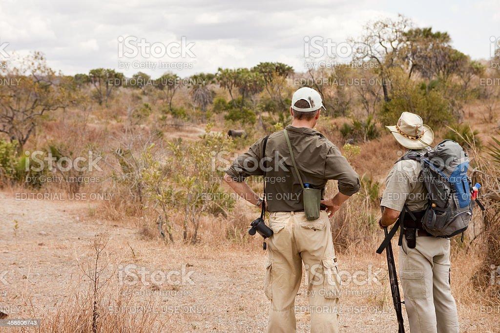 Tanzanian walking safari with guide watching an elephant stock photo