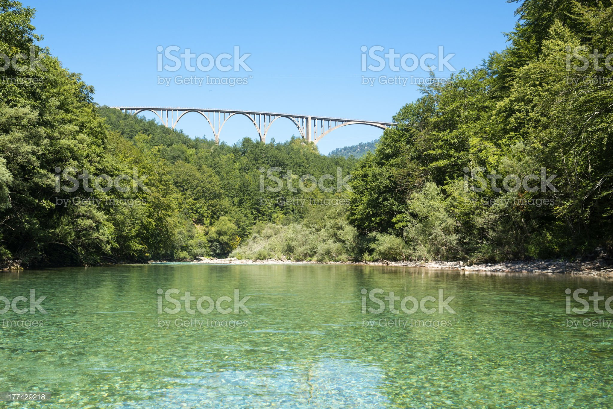 Tara Bridge royalty-free stock photo