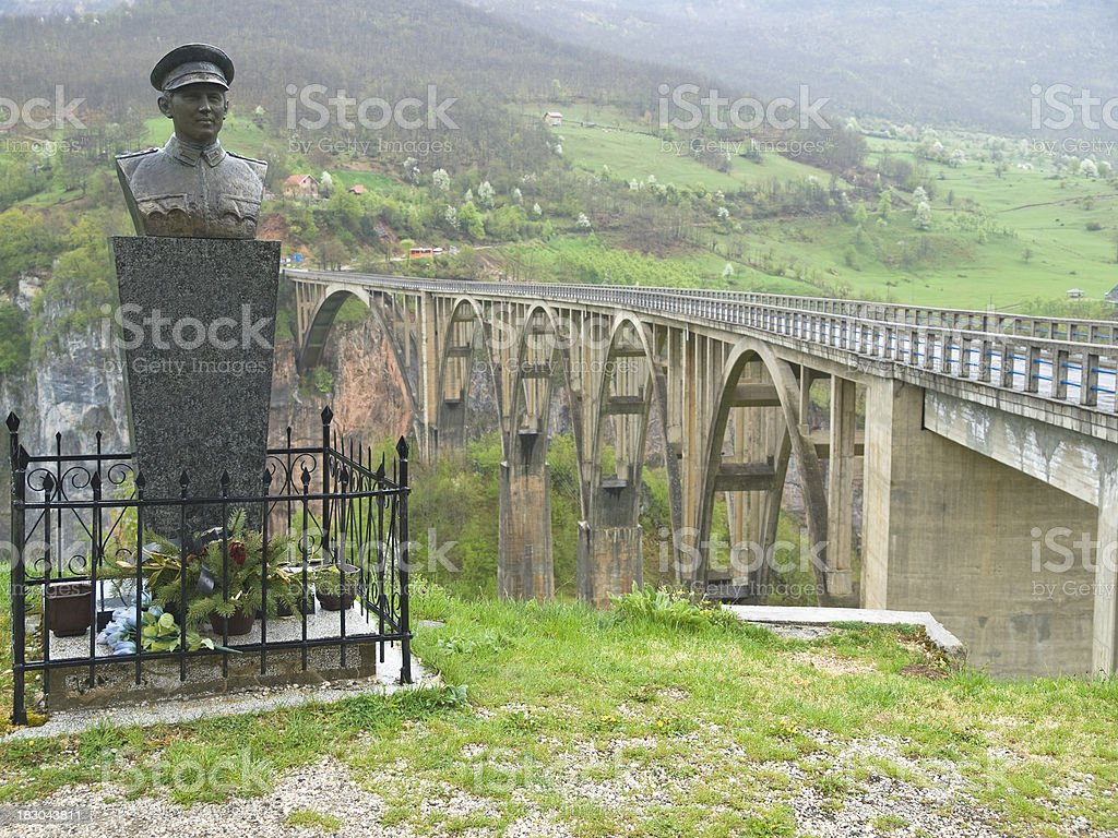 Tara bridge stock photo