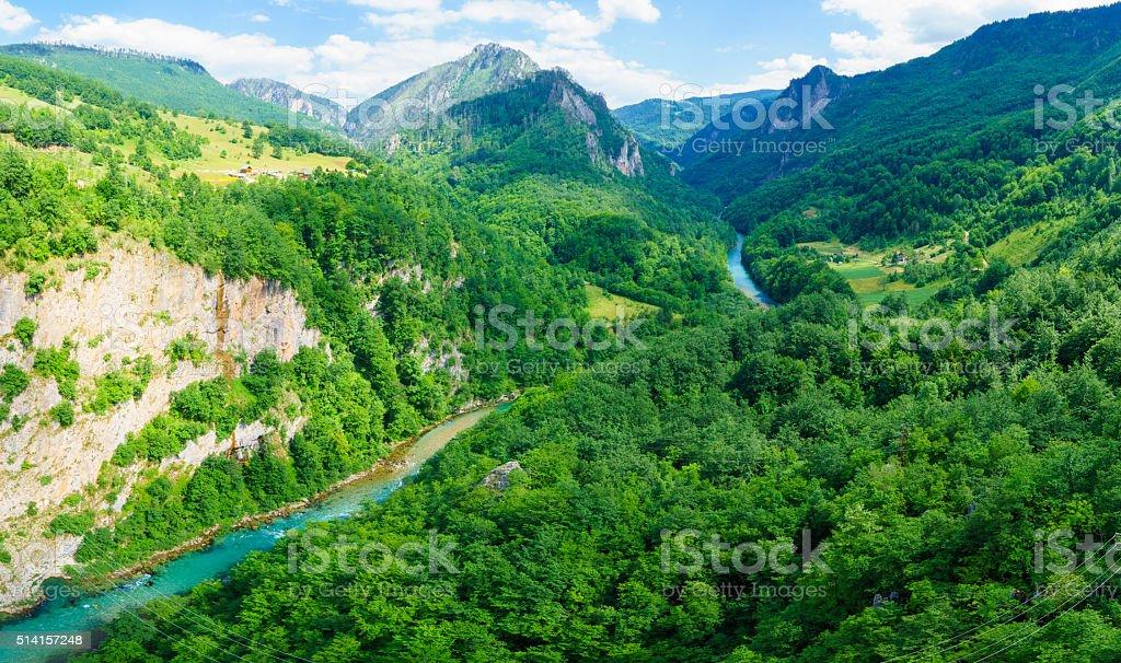 Tara River and Canyon stock photo