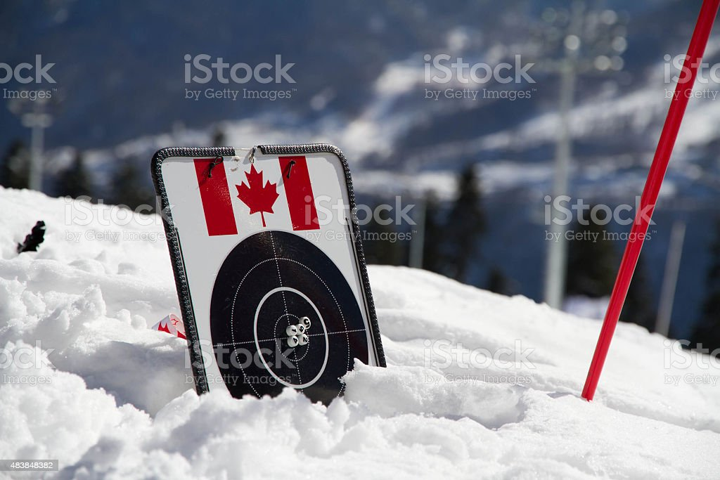 target for biathlon on the snow stock photo