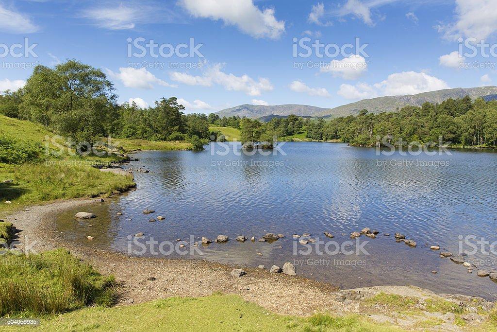 Tarn Hows Lake District National Park England uk near Hawkshead stock photo