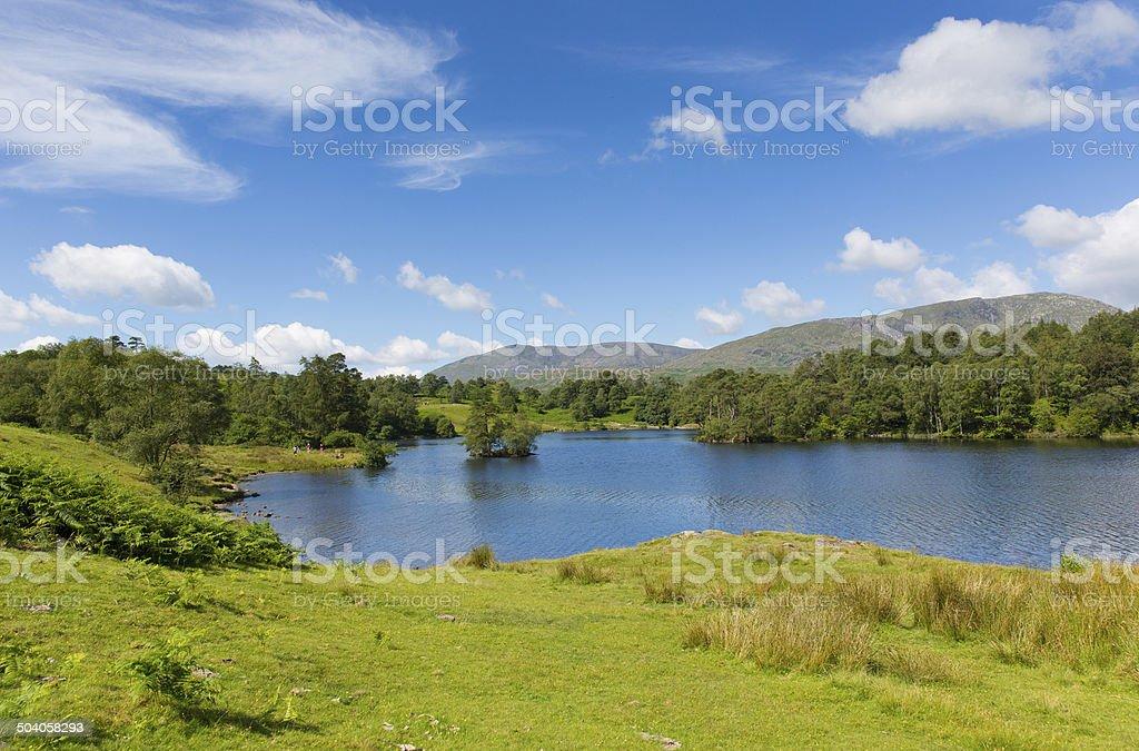 Tarn Hows The Lakes Cumbria England uk near Hawkshead stock photo