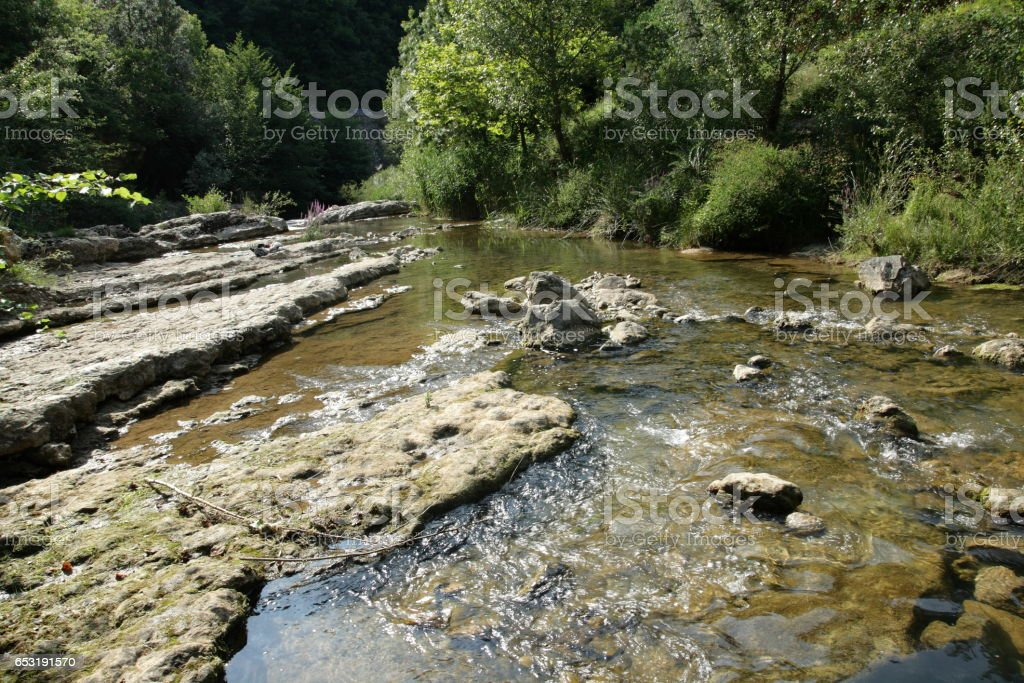 Tarn river in Gorges du Tarn or Tarn canyon, France stock photo