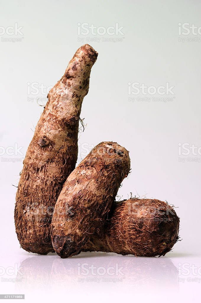 taro or malanga roots royalty-free stock photo